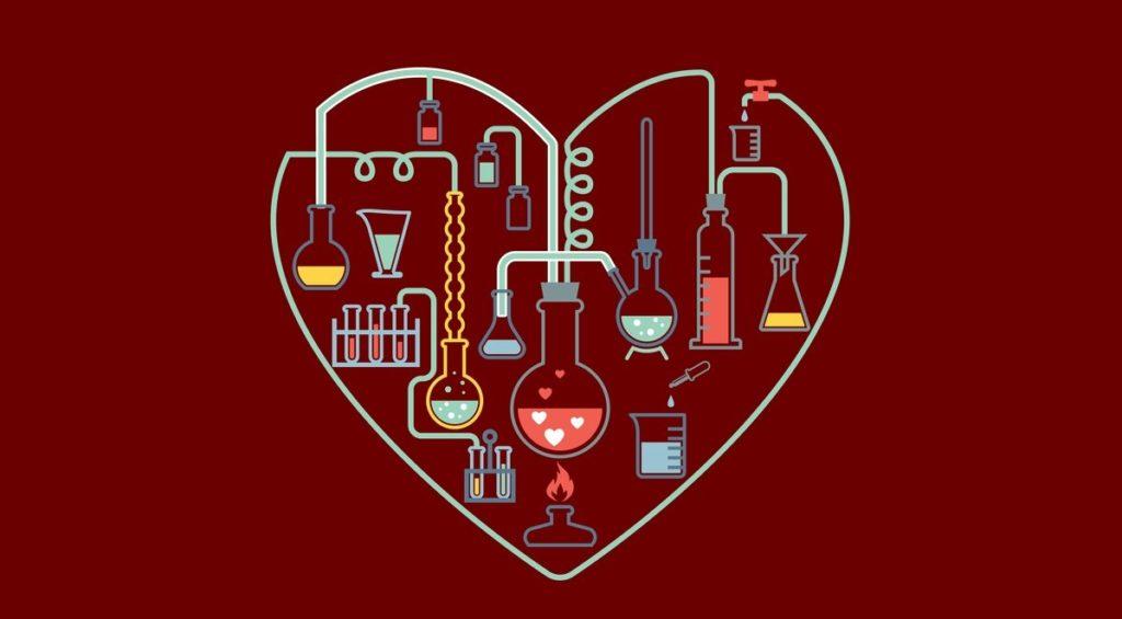Химия любви: научный взгляд Хелен Фишер.
