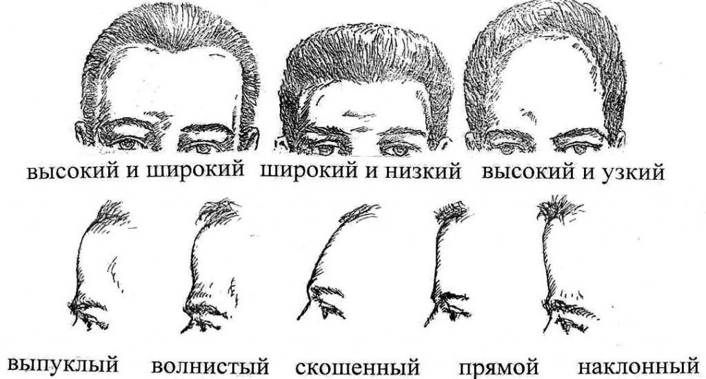 Как узнать характер человека по лицу
